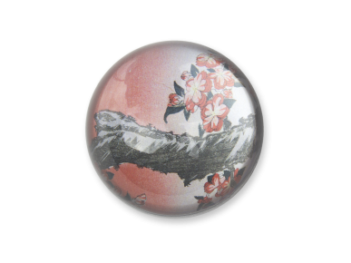 Glass dome paperweight with a detail of a Hokusai print inside.