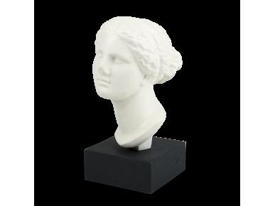 Cap d'una estàtua de Venus sobre una base negra