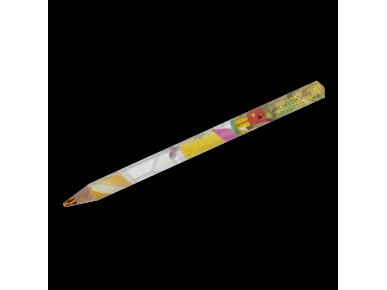 Crayon Magic - Jardin d'Hiver