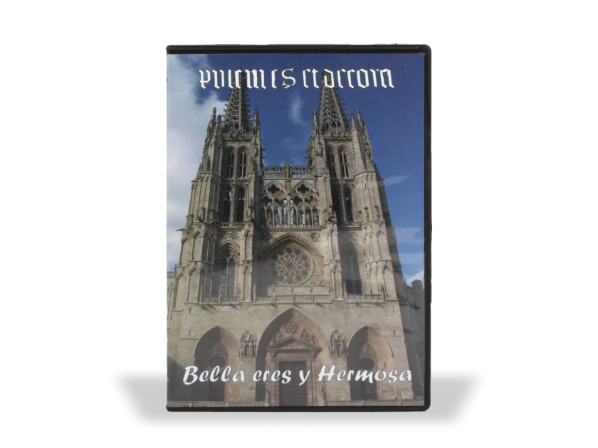 case, seen from the front, of a DVD on the cathedral of Burgos